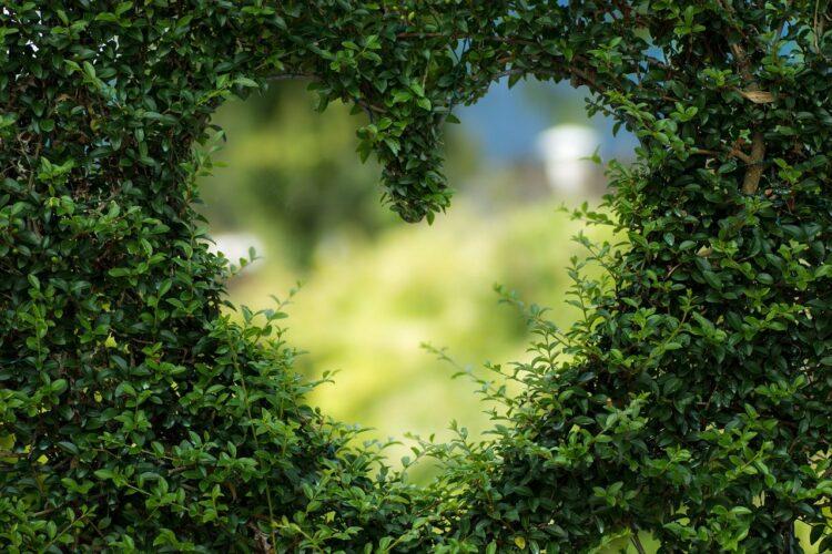 Zelf maken met hout: 5 tuin ideeën